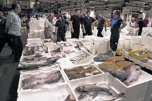 El mercado del pescado de Mercabarna en plena actividad.