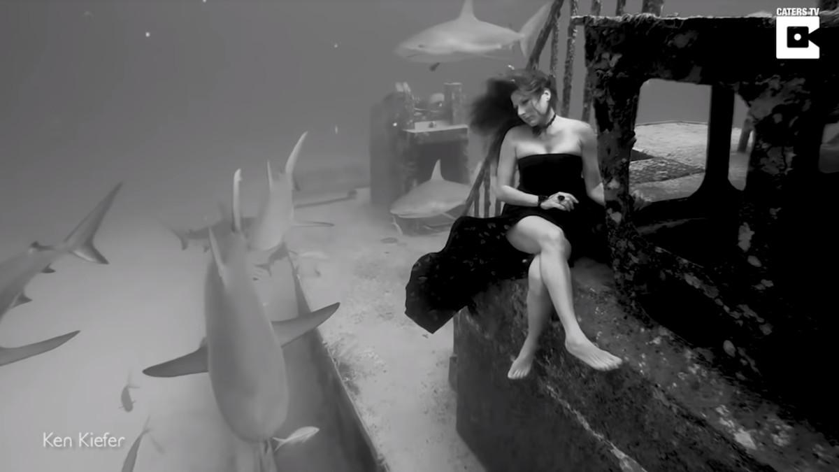 La modelo Kimber Kiefer, de 40 años,posa entre tiburones.