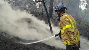 Bomberos apagando el fuego forestal de Sant Andreu de la Barca.