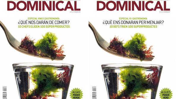 EL DOMINICAL DEL 17 DE NOVIEMBRE
