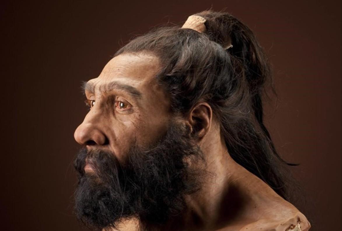 Reconstrucción posible de un neandertal para una exposición en elMuseo de Historia Natural del Instituto Smithsoniano, en Washington.