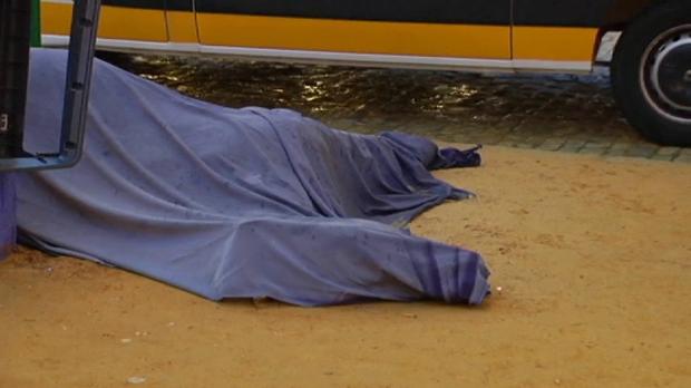 Un caballo falleció en el día de ayer en el Real de la Feria de Sevilla