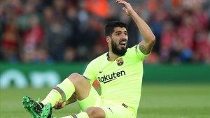 Suárez se lamenta en Anfield donde sufrió una rotura de menisco.