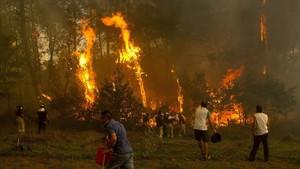 Un grupo de vecinos lucha contra el fuegoen la zona de Zamanes, cerca de Vigo.