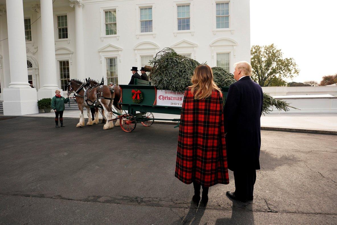 La Casa Blanca ya tiene su árbol de Navidad Internacional