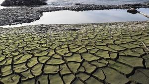 Tierra seca y cuarteada en el embalse de Belesara los pies del rio Miñocerca de Portomarín (Pontevedra)
