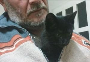 """""""Este gato no se queda en casa"""": así han 'vencido' estos felinos a los progenitores de sus dueños"""