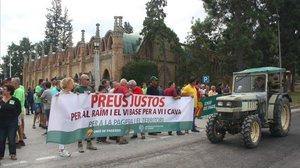 Protesta de los viticultores catalanes por el precio de la uva en la jornada de huelga que han llevado a cabo.