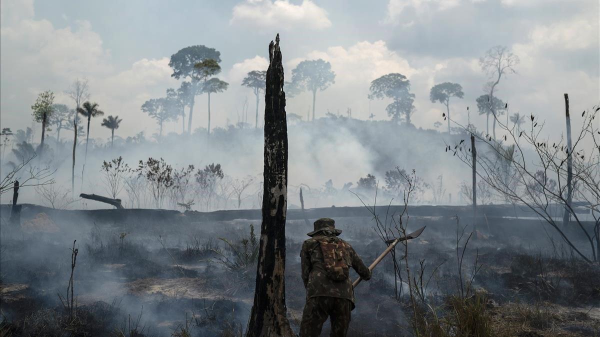 Coalición mundial de científicos declara emergencia climática - Sociedad y Justicia
