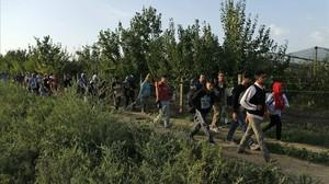 Un grup de refugiats caminen als voltants de Sid, a prop de la frontera amb Croàcia.