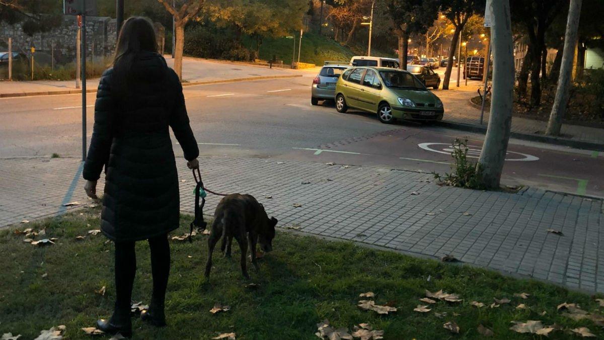 Una mujer pasea con su perro por un parque del Poble Sec de Barcelona.