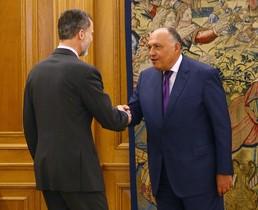 El rey Felipe VI y el ministro egipcio de Exteriores tratan sobre cooperación contra el terrorismo