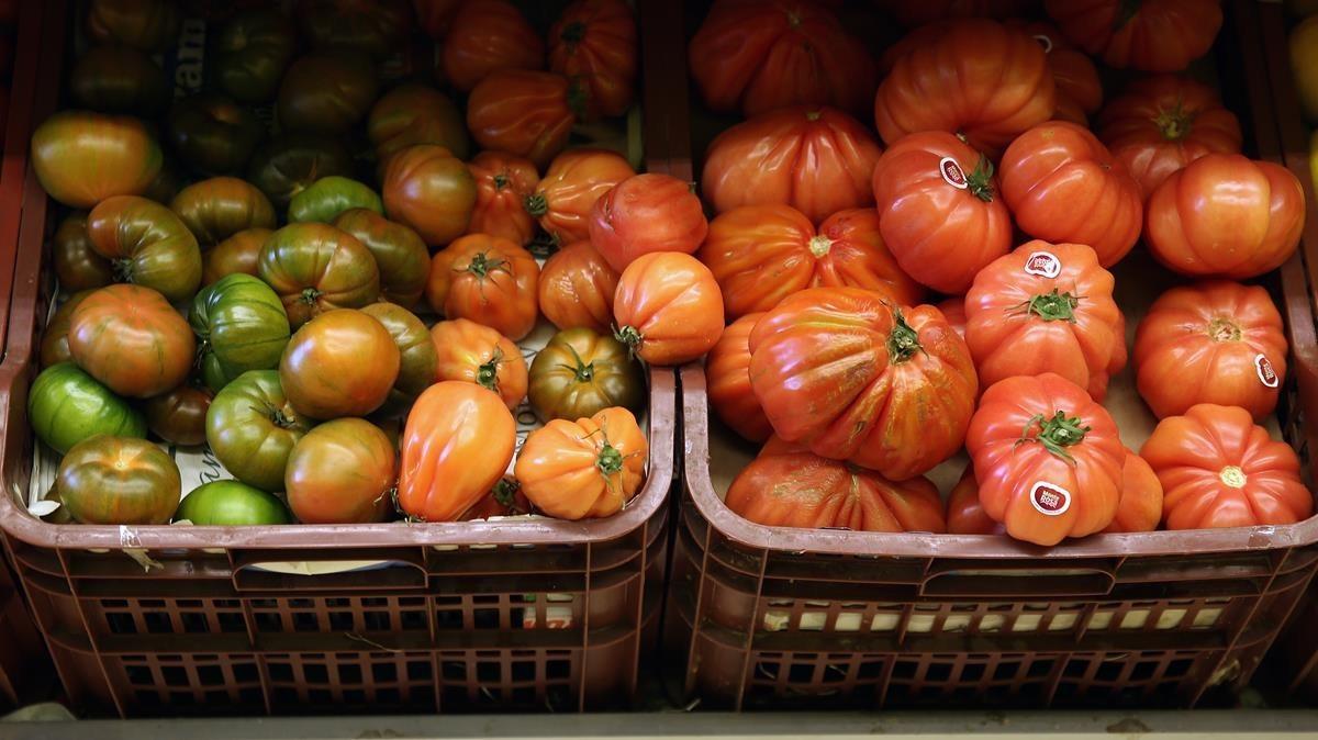 Tomates en una frutería de Barcelona.
