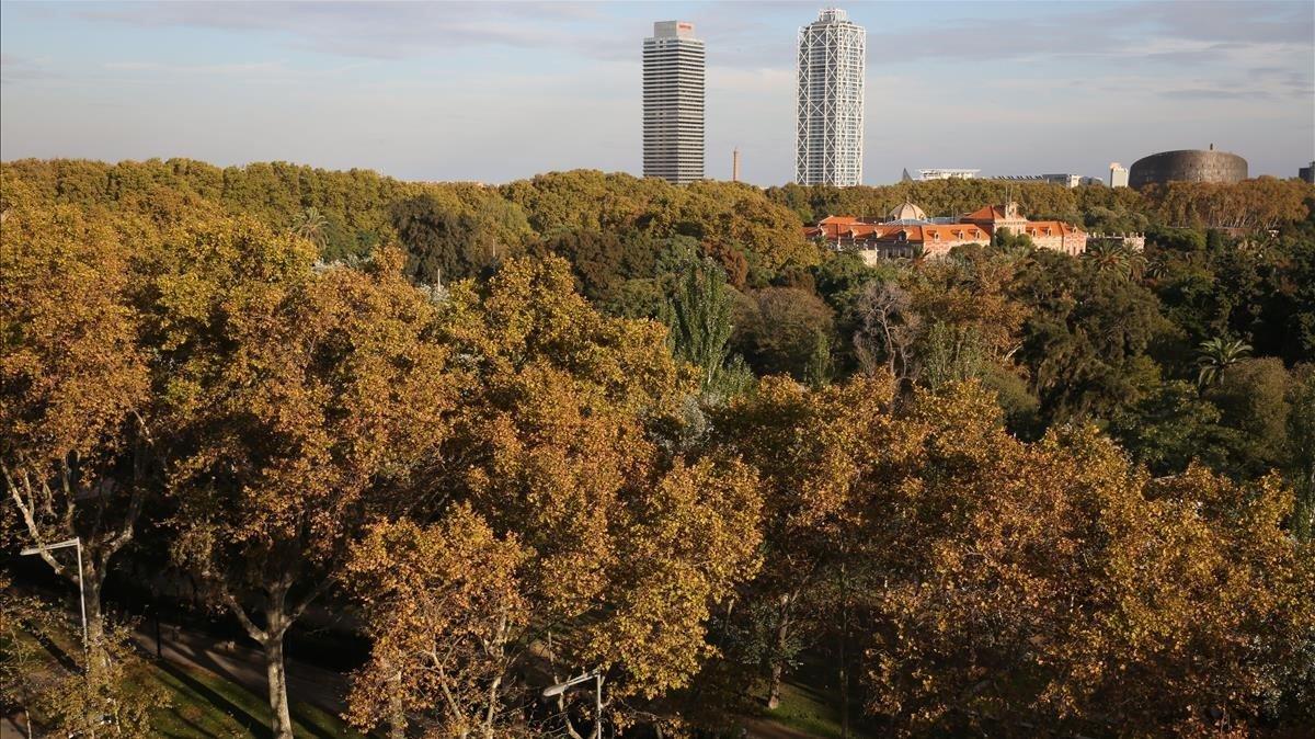 Fotografía panorámica del parque de la Ciutadella de Barcelona, en una imagen de archivo