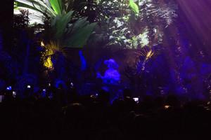 Björk, en el frondoso bosque desde el que ofició de 'dj' en el Sónar.
