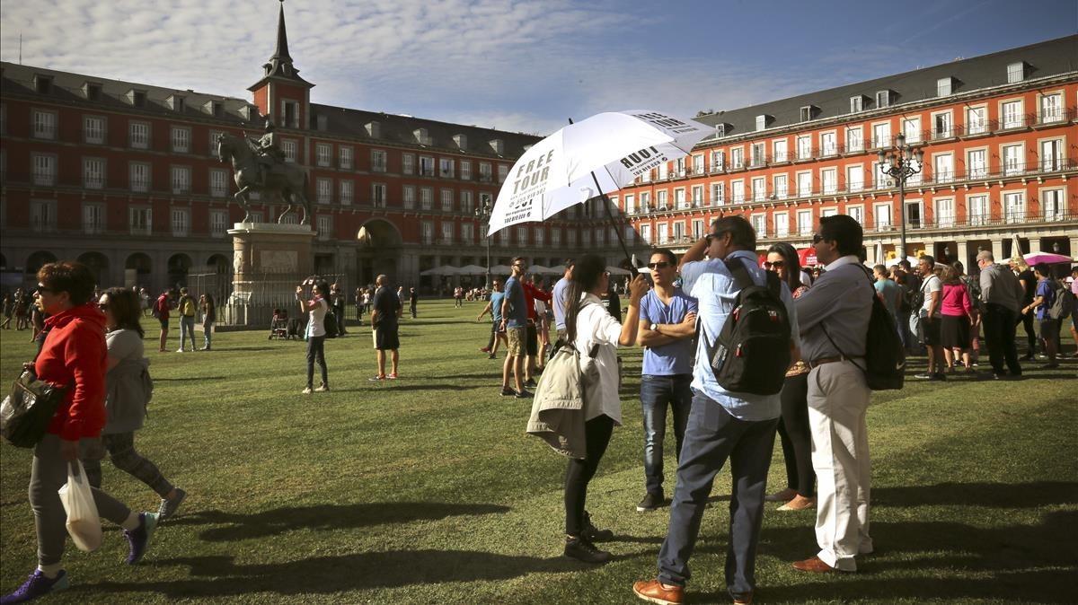 La hierba brota en la plaza Mayor de Madrid