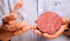Hamburguesa de carne artificial.