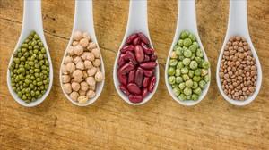 Diferentes tipos de legumbres