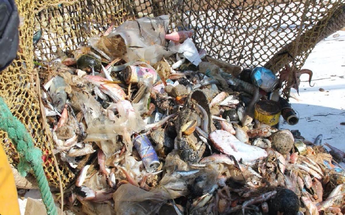 Basura marina, un problema de enorme dimensión.