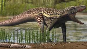 Recreación del Prorotodactylus mesaxonichnus.