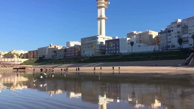 Imágenes grabadas esta mañana en la playa Santa María del Mar de Cádiz