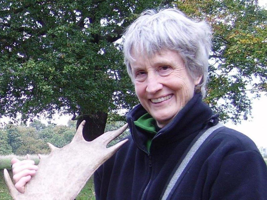 Donna Haraway: «Si deixem de criticar, estem morts»