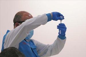 En la imagen,detalle de una prueba PCR.