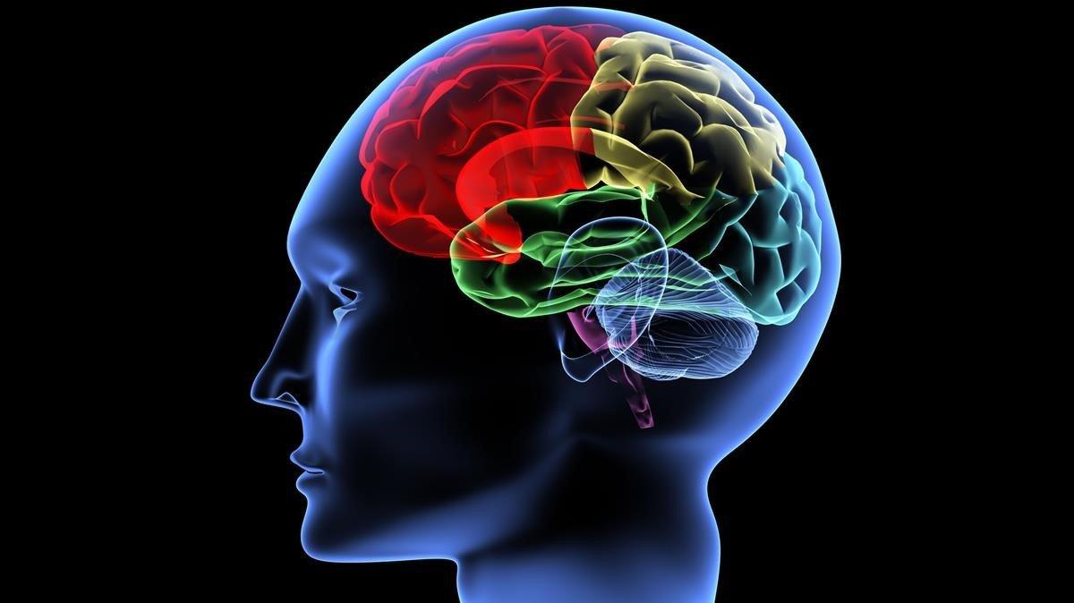 El ictus se ha convertido en una enfermedad cerebrovascular cada vez más en aumento.