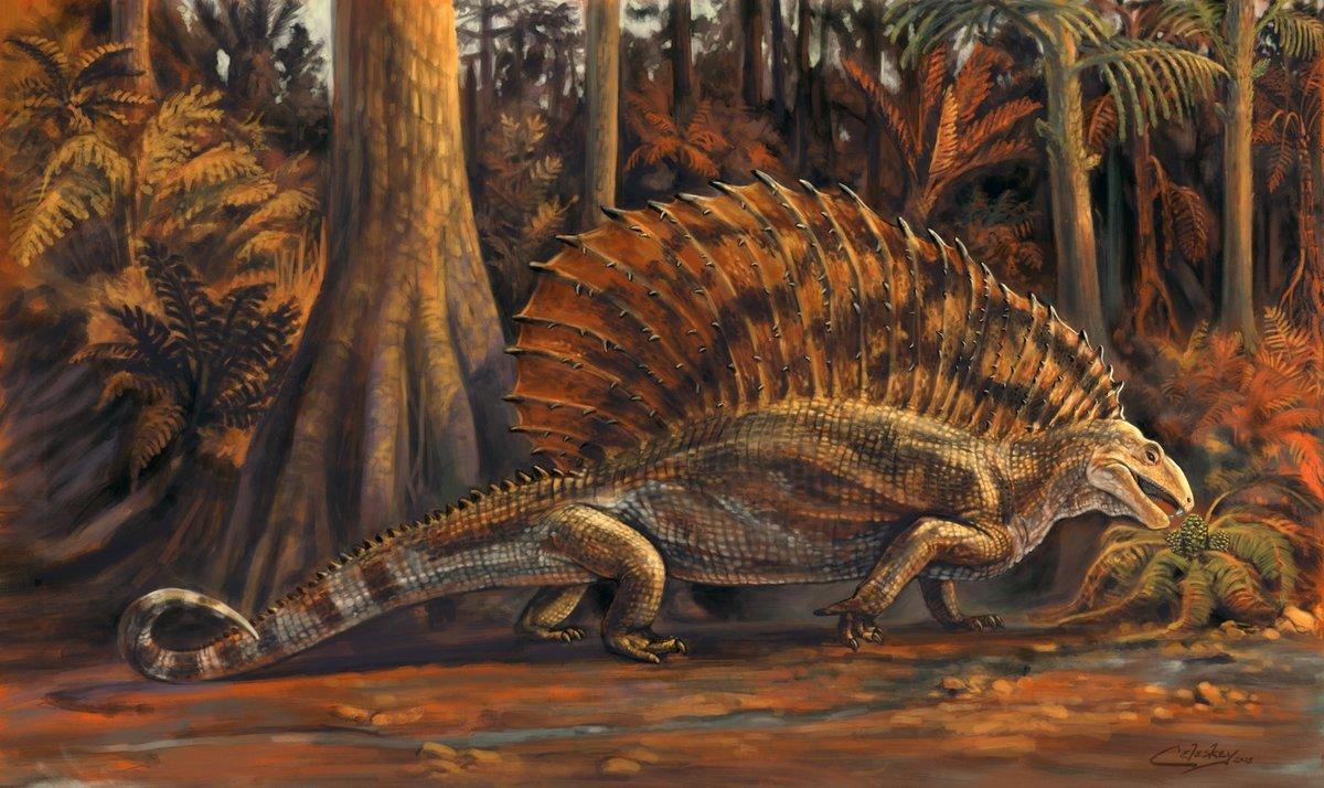 Gordodon fue descubierto en 2013 en Estados Unidos.