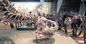Adultos y niños alrededor de 'Trix', la tiranosauria que marca las propuestas de estas vacaciones en el CosmoCaixa.