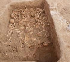 Trobats 90 cranis i ossos humans en ple centre de Madrid