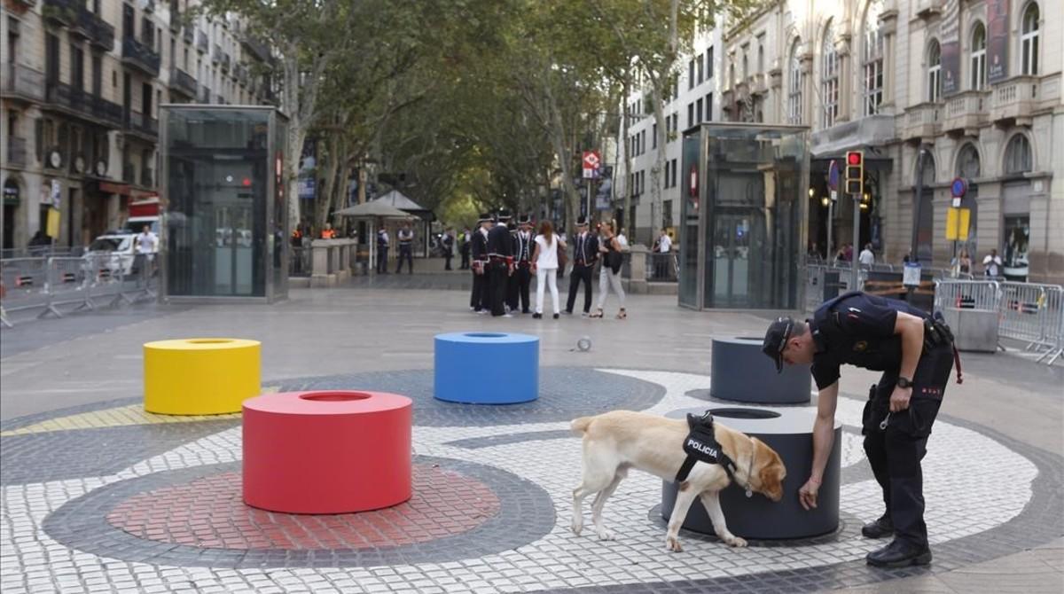 Un perro policía rastrea el lugar donde se celebrará el homenaje a las víctimas de los atentados.