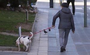 Una mujer pasea a su perro en Tarragona.