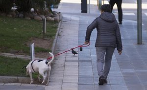 Un gos ataca un home que estava maltractant la seva parella a Tarragona