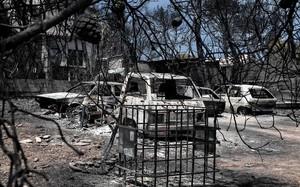 Trobades mortes les dues nenes bessones desaparegudes en l'incendi de Grècia