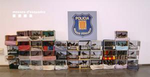 Imagen de los pájaros fringílidos decomisados en la operación policial.