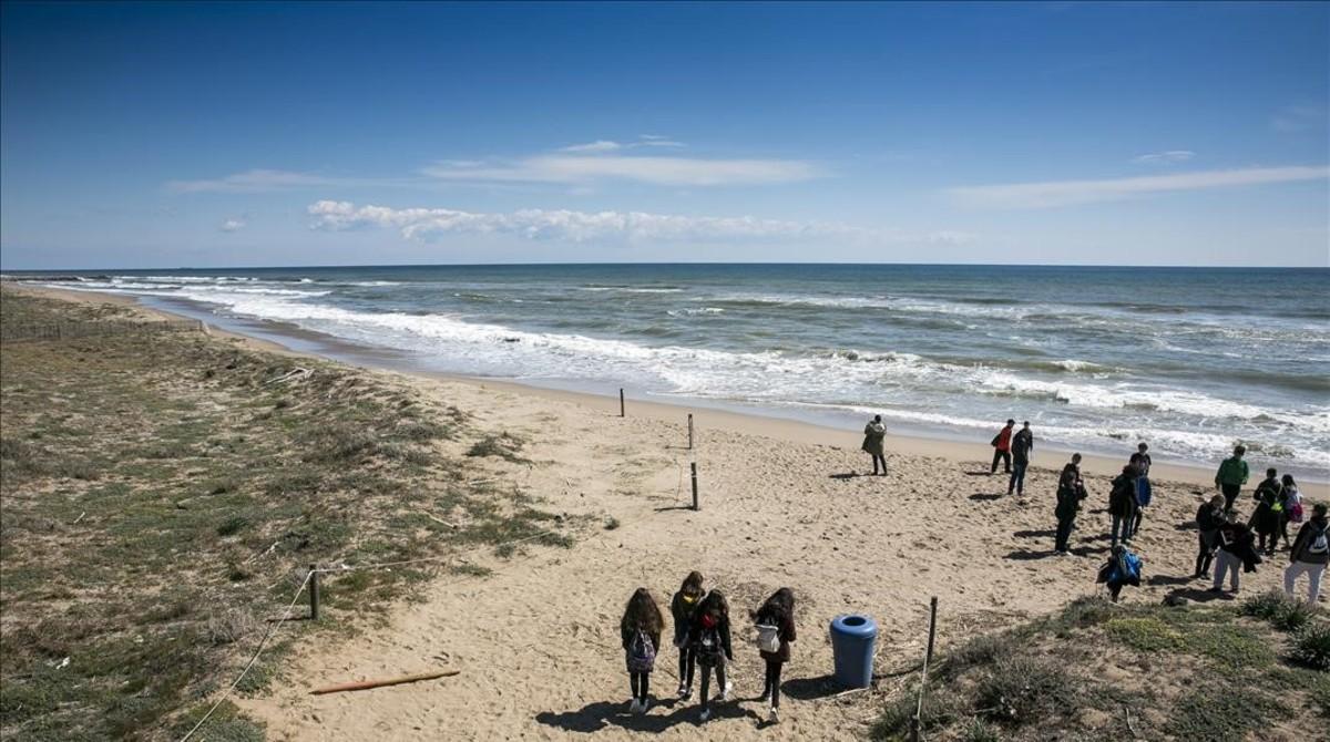 Un grupo de personas pasean por la mermada costa de Viladecans.
