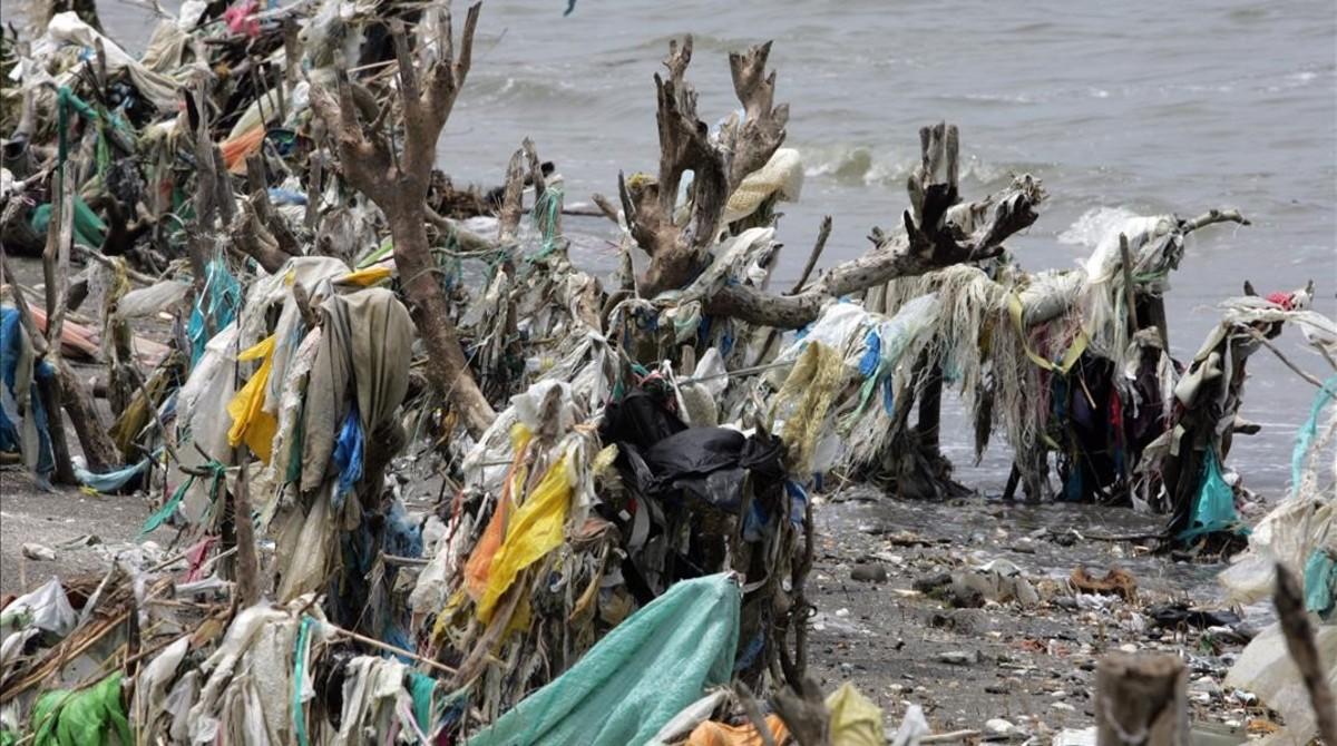Vegetación costera cubierta por los plásticos transportados por la superficie del mar.