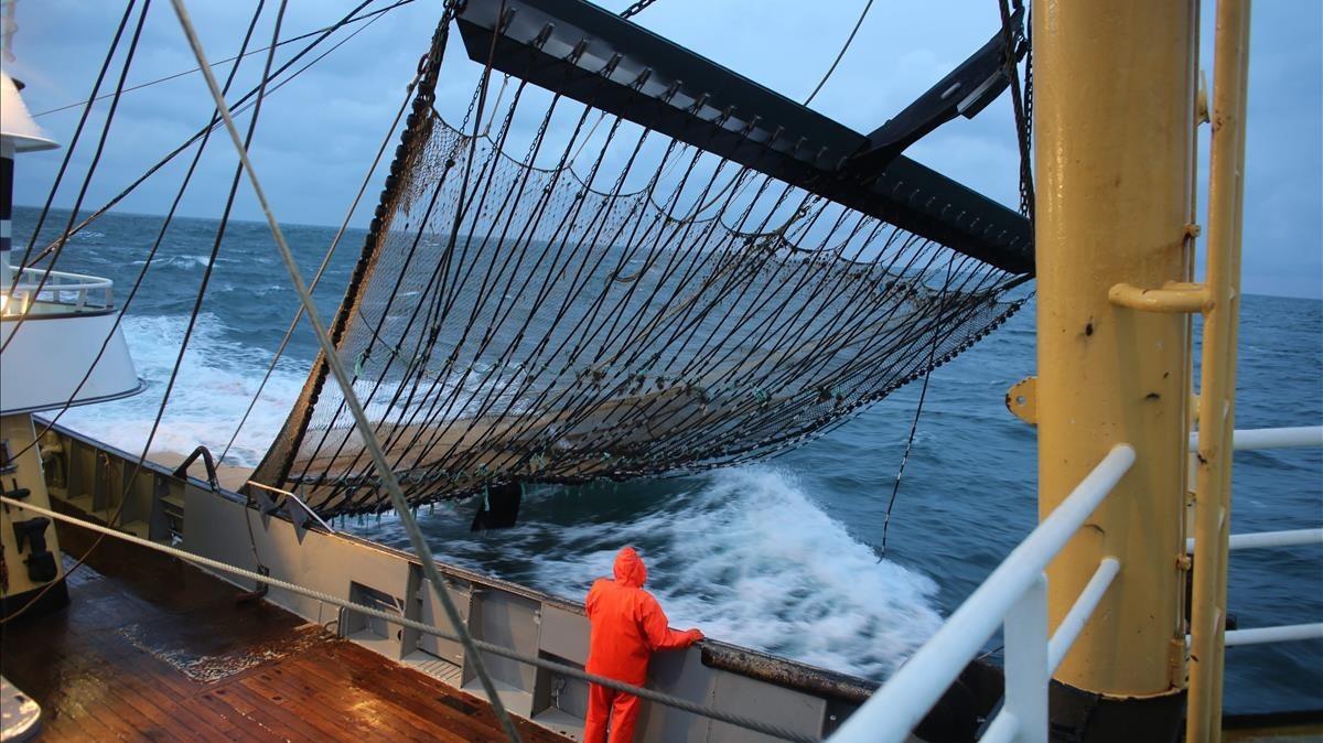 Pesquero holandés con redes equipadas con electrodos en el Mar del Norte.