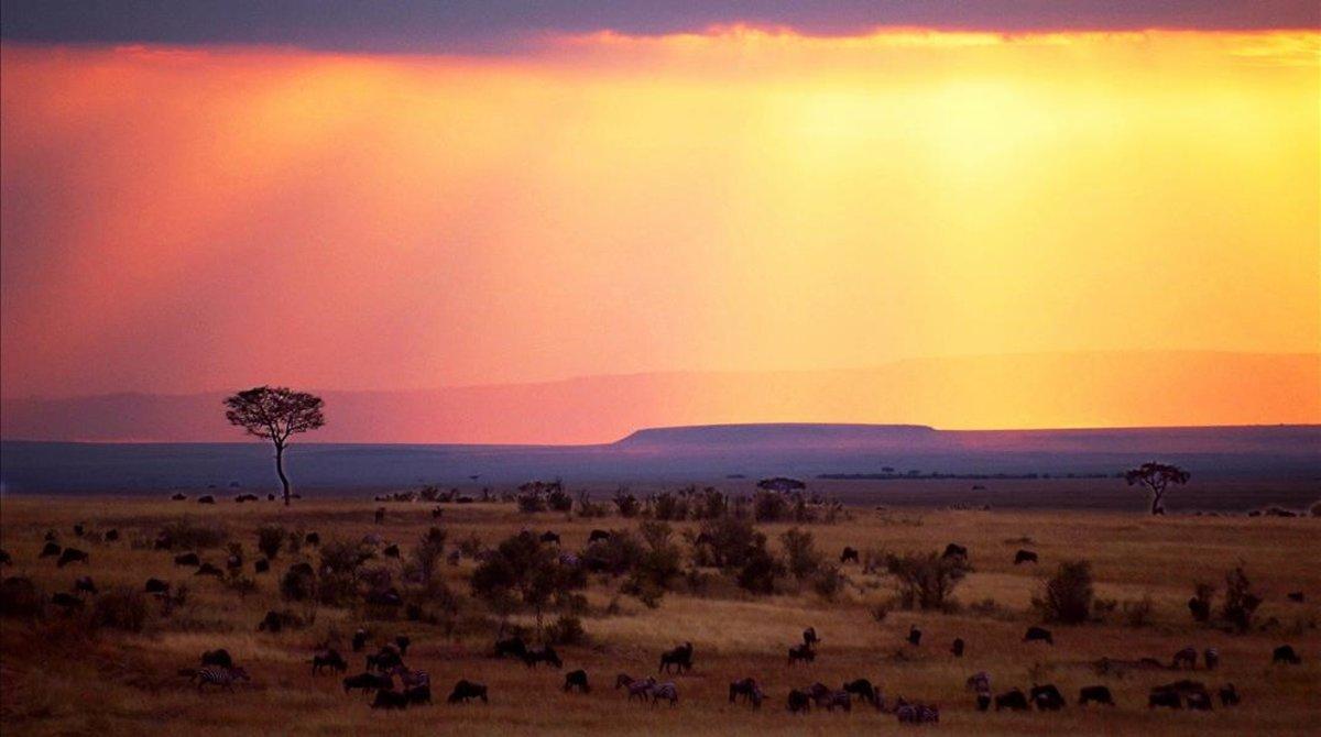 Puesta de sol en Masai Mara (Kenia), en el 2010.