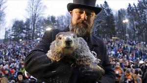 La marmota Phil ha parlat: la primavera arribarà aviat