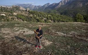 Carmen Solbes, en la primera finca de almendros afectada por la 'Xylella fastidiosa', donde los árboles han sido arrancados y triturados, en la localidad alicantina de Guadalest.