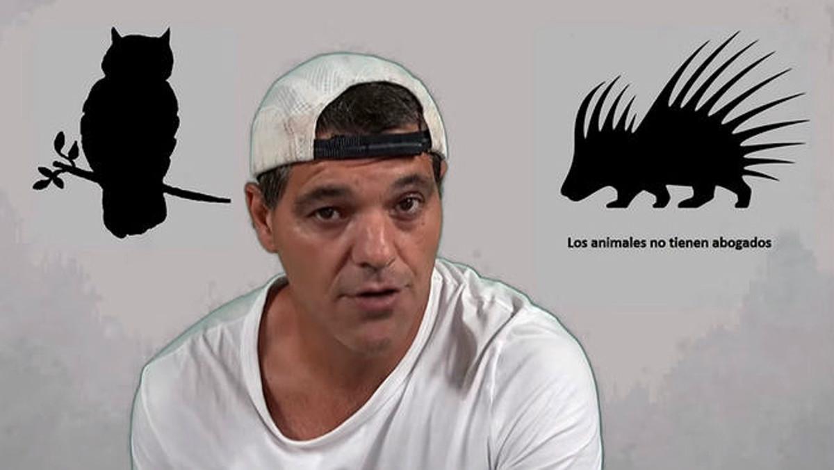 Frank Cuesta, durante su alegato en contra del vídeo del pingüino.