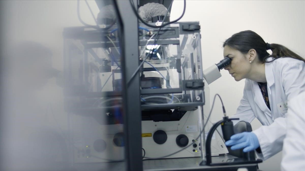Tania Patiño, investigadora del Institut de Bioenginyeria de Catalunya (IBEC)