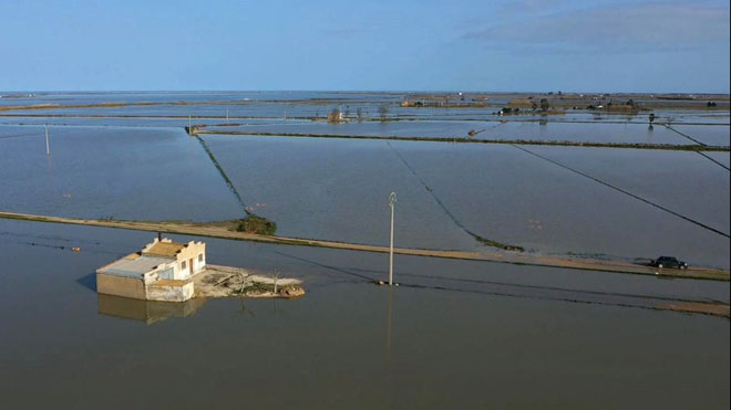 Plataforma en Defensa del Ebro pide soluciones definitivas para el Delta.