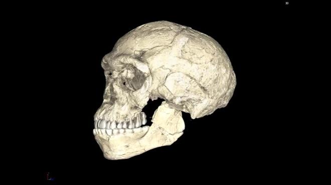El Homo Sapiens tiene cien mil (100.000) años más de los que se pensaba.