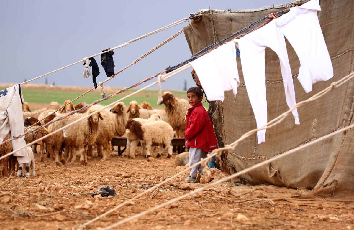 Una de las tiendas improvisadas en el campamento para desplazados en Jarufiya.