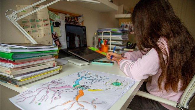 Una pequeña de Vitoria sigue a través de internet las clases, este jueves.