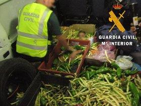 Un inmigrante, oculto entre cajas de hortalizas.