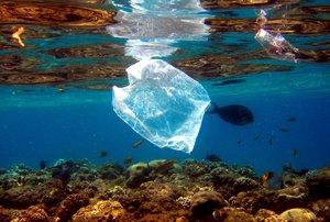 Es la primera que calcula a nivel mundial la cantidad de microplásticos en el lecho marino.